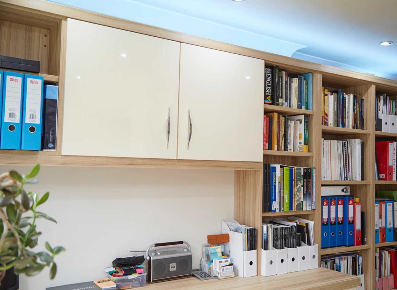 Case study showing cabinet and bookshelves in home office