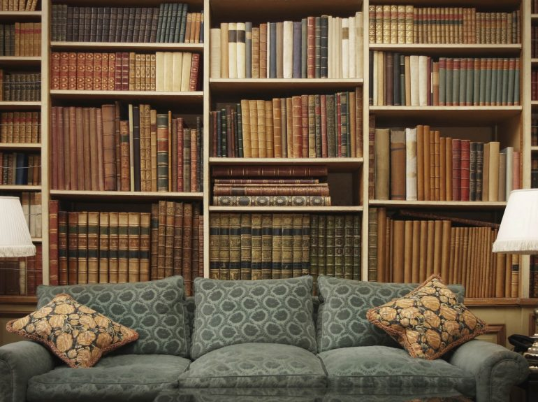 Comfortable sofa in home library